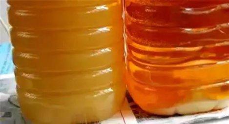 菜籽油冬天会冻住吗?